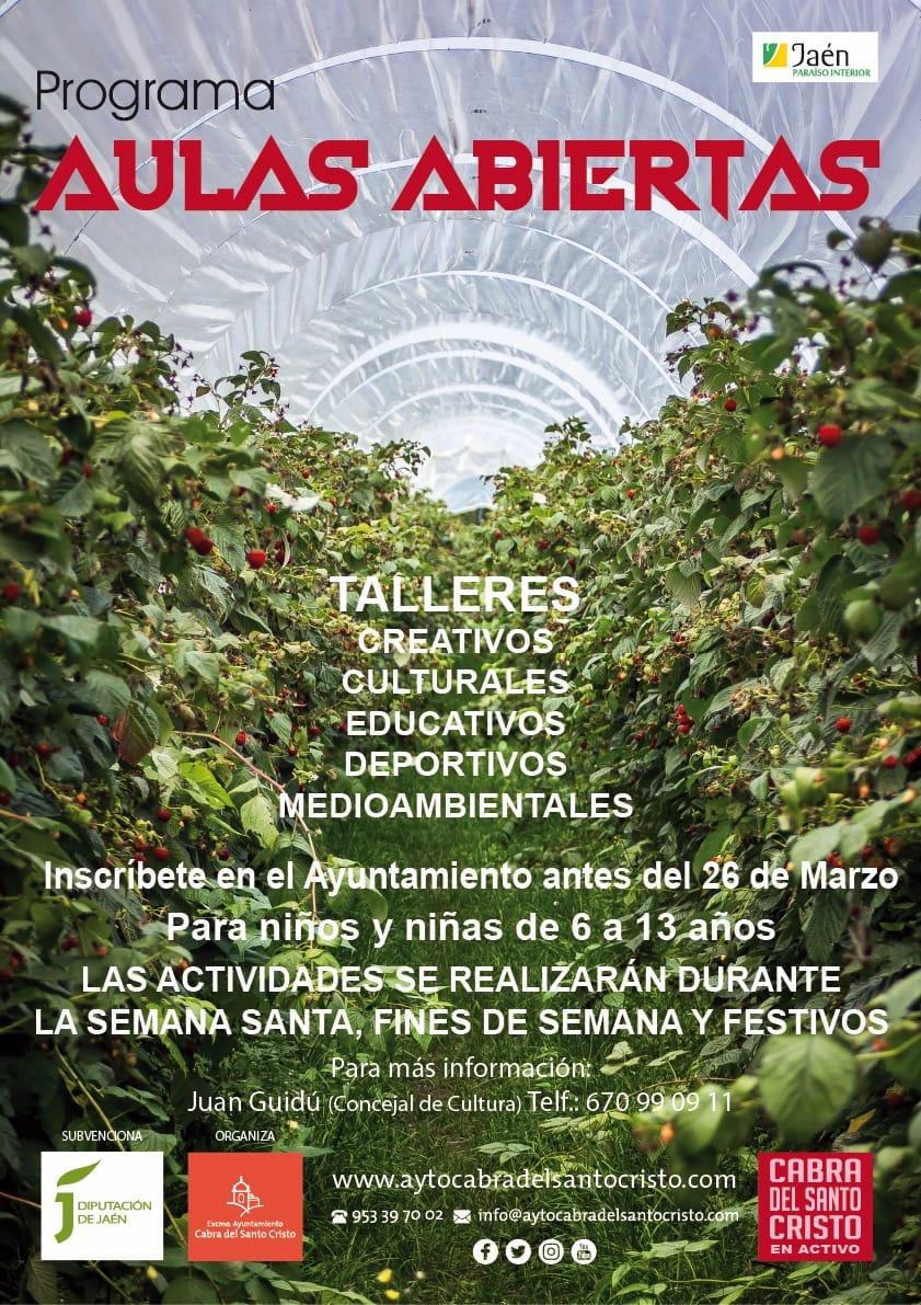 PROGRAMA DE AULAS ABIERTAS